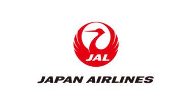JAL客室乗務職 既卒採用募集開始!採用予定数は?
